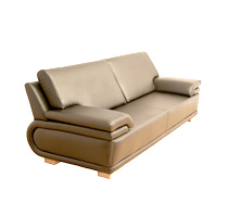 Professional Leather Sofa Cleaning & upholstery steam cleaning in Chicago,IL